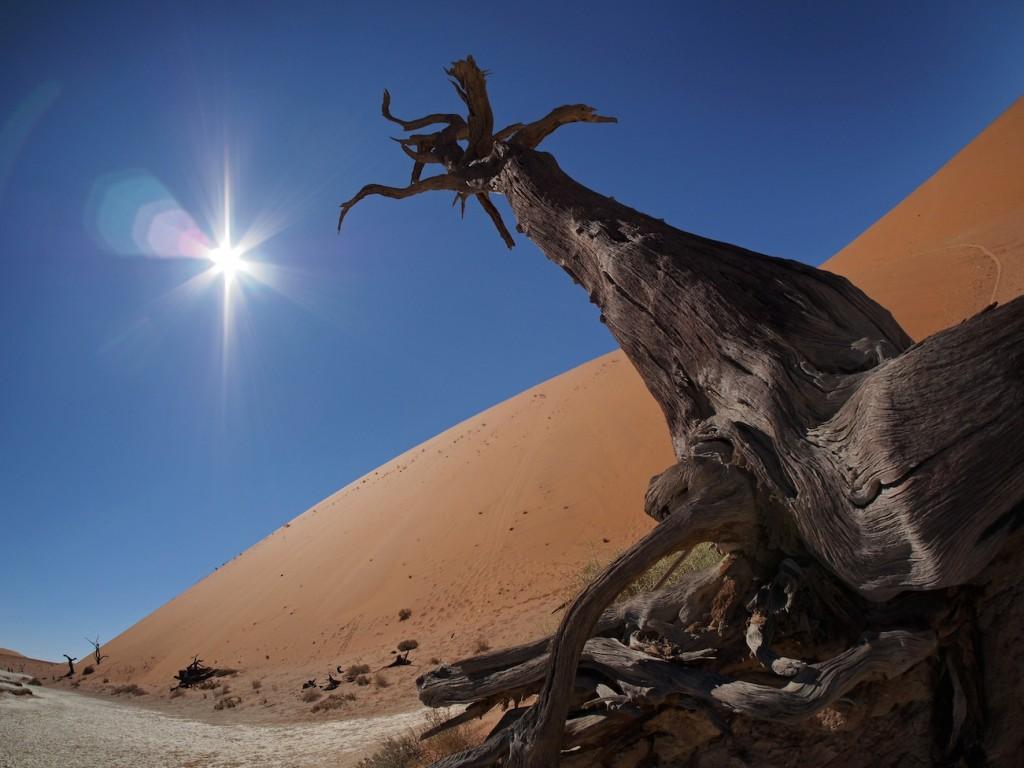 Namibia Alles tot: Das Dead Vlei.
